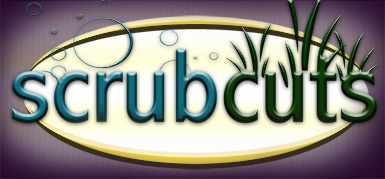 Scrubcuts on Marthas Vineyard, car detailing, lawn mowing, weeding, hauling, house cleaning, pet waste removal.
