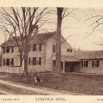 Lincoln Hill - Wareham