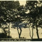 Onset Bay 1