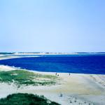 1960's Cape Cod 24