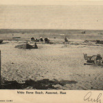 PLYMOUTH MA ~ MANOMET ~ WHITE HORSE BEACH ~ C 1905