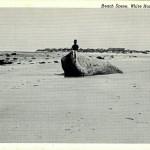PLYMOUTH MA ~ WHITE HORSE BEACH ~ BEACH SCENE ~ c 1950